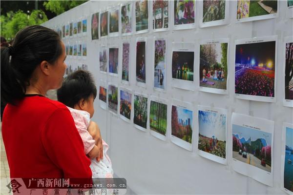柳州春彩花潮摄影大赛参赛作品展吸引市民眼光