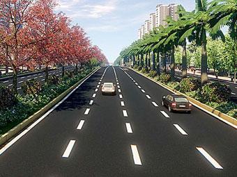 部分路树被挖走引质疑 民族大道绿化只做加法(图)