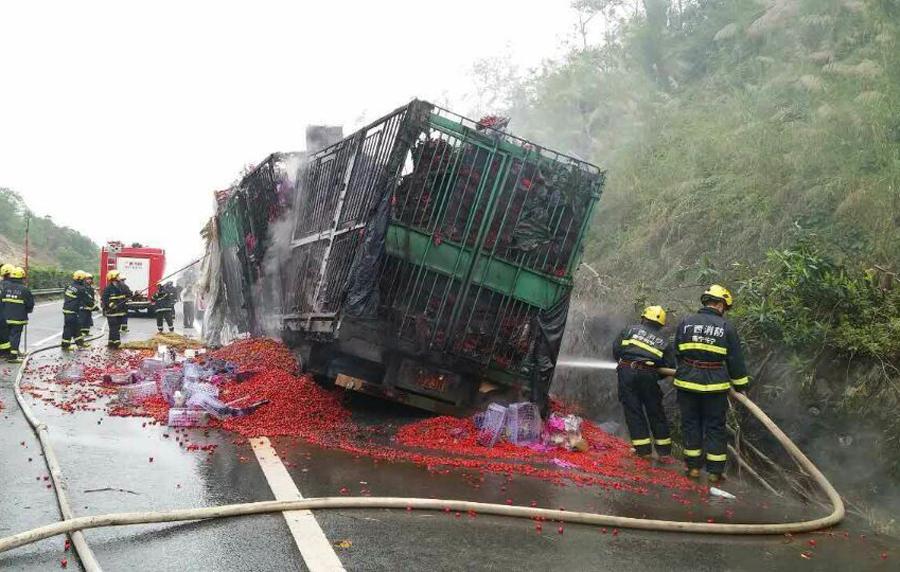 高清:大货车在高速公路上起火 一车圣女果被烧毁