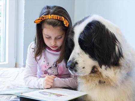 世界读书日:和狗狗一起阅读(组图)