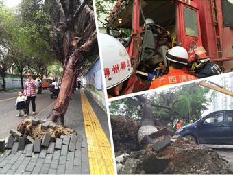 4月23日焦点图:大货车发生追尾 司机受伤被困
