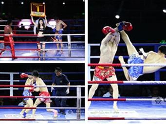 中国·东盟大地英雄汇国际自由搏击赛首轮开打