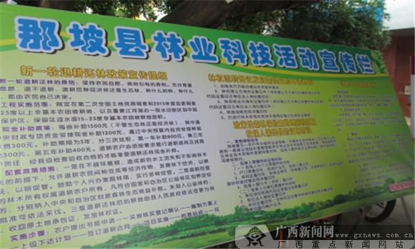 图为县林业局在县武装部门口摆放宣传展板.
