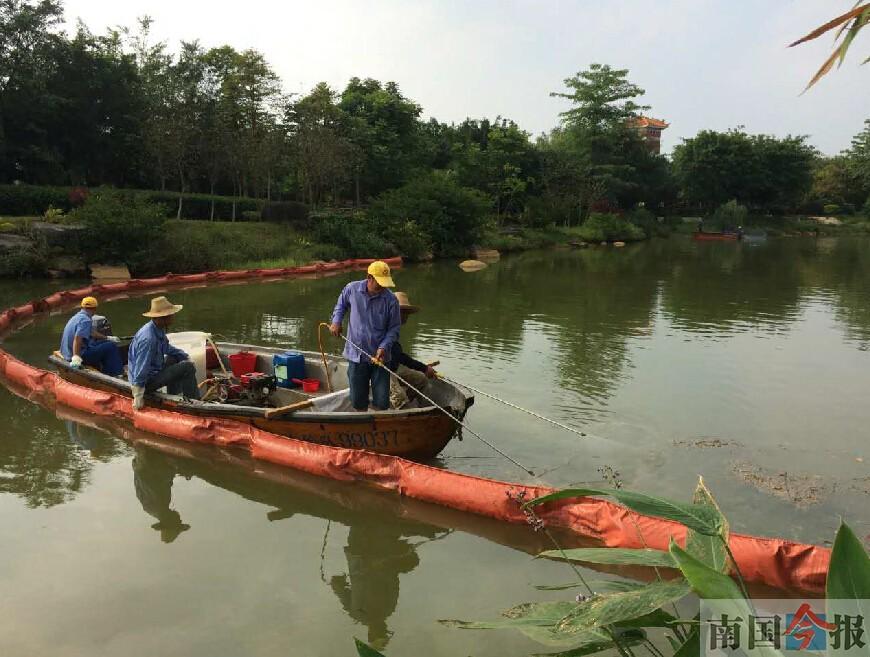 柳州园博园人工湖遭污染 源头已找到治理尚需时日