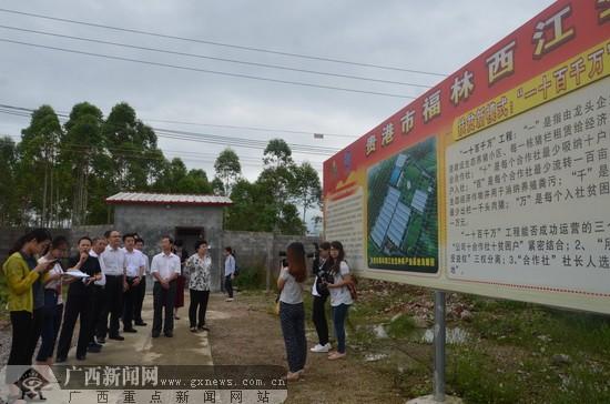 公司和广西扬翔公司联合打造的精准扶贫项目产业基地内正式挂牌成立