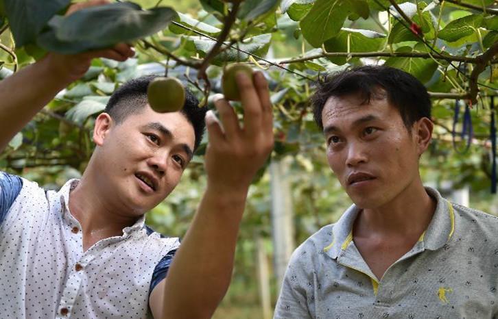 广西桂林:瑶乡青年返乡做创客
