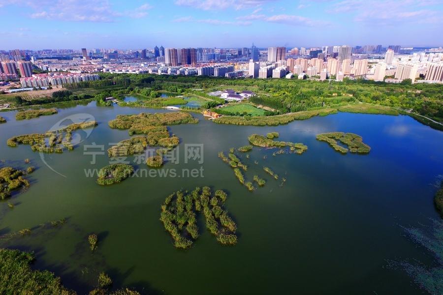 银川湖景惊艳初秋