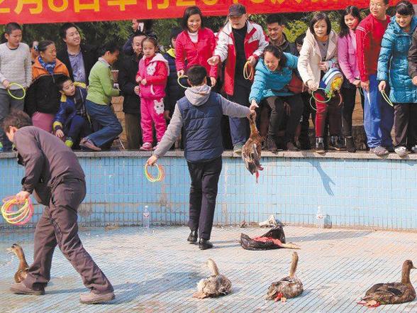 南宁仅两成小区成立业委会 看筹建攻略