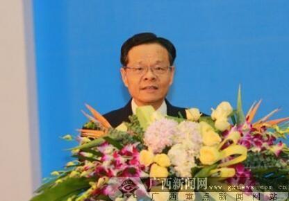 陈武:加快推进中国―东盟信息港核心基地建设