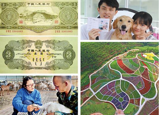 27日焦点图:3元面额人民币 如今估价至少翻2万倍