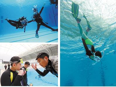 潜水:探寻水下世界 像美人鱼一样跟海龟游泳(图)