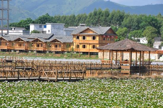 宾阳:乡村建设初具规模 一年四季瓜果飘香