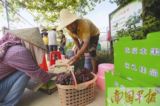 南宁兴宁区三塘镇围村上榜2016年美丽休闲乡村