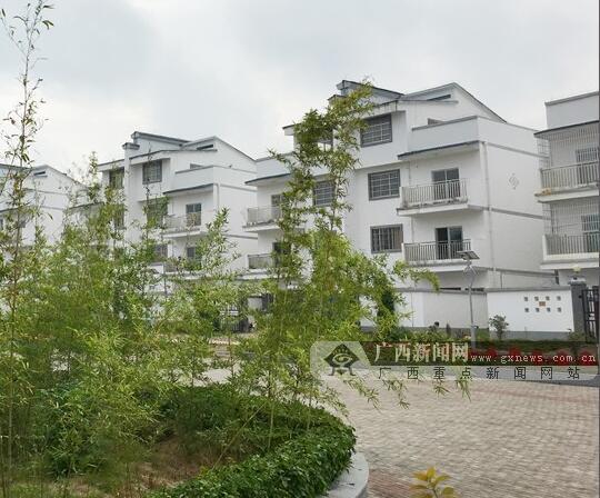 团岩坡:民主绿化管护有成效 展现生态乡村新风貌