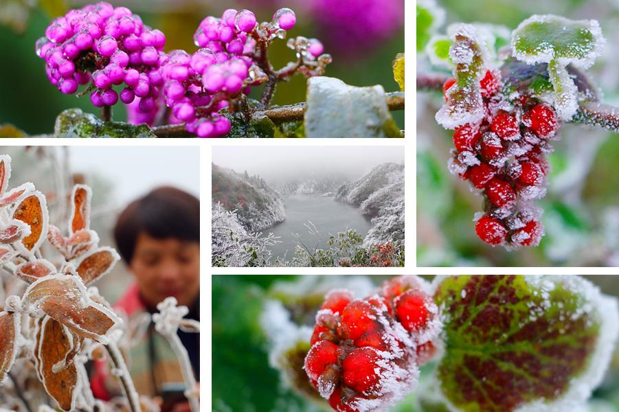 高清:冰雪下的三江现极致美景