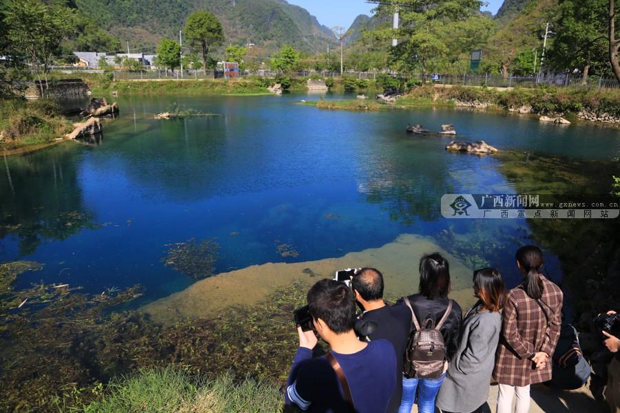 澄江河滋养一方水土 都安反哺保护原生态湿地(图)