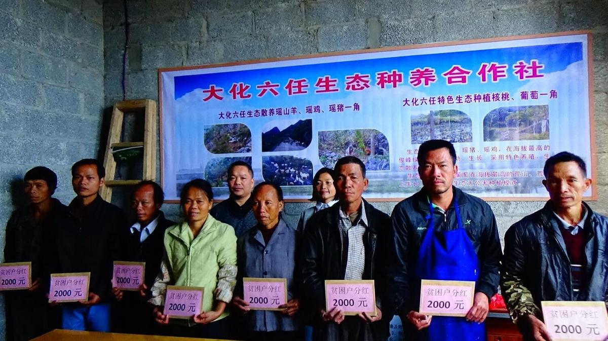 百马乡大化六任生态种养专业合作社挂牌成立