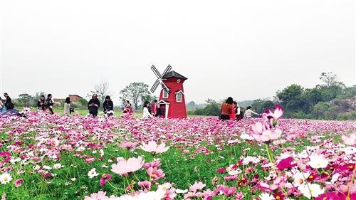 南宁月月旅游节再启程