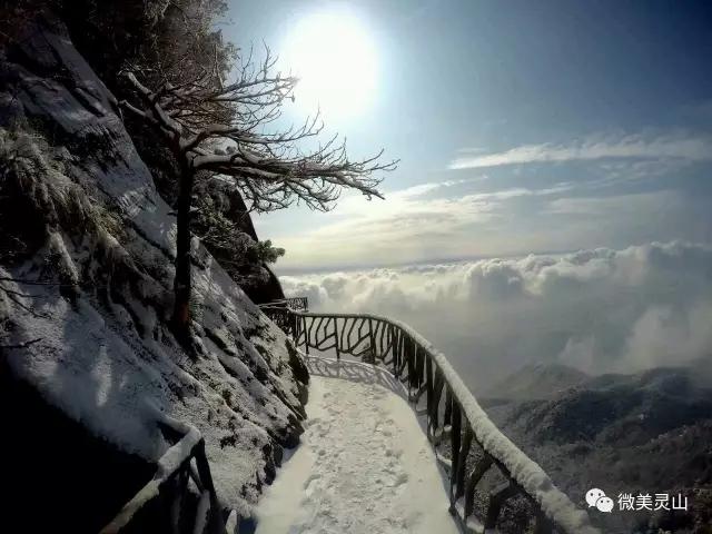 【冬天最温暖的事】寻一处好地晒太阳