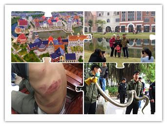2月6日焦点图:南宁欧洲风情小镇被市民挤爆