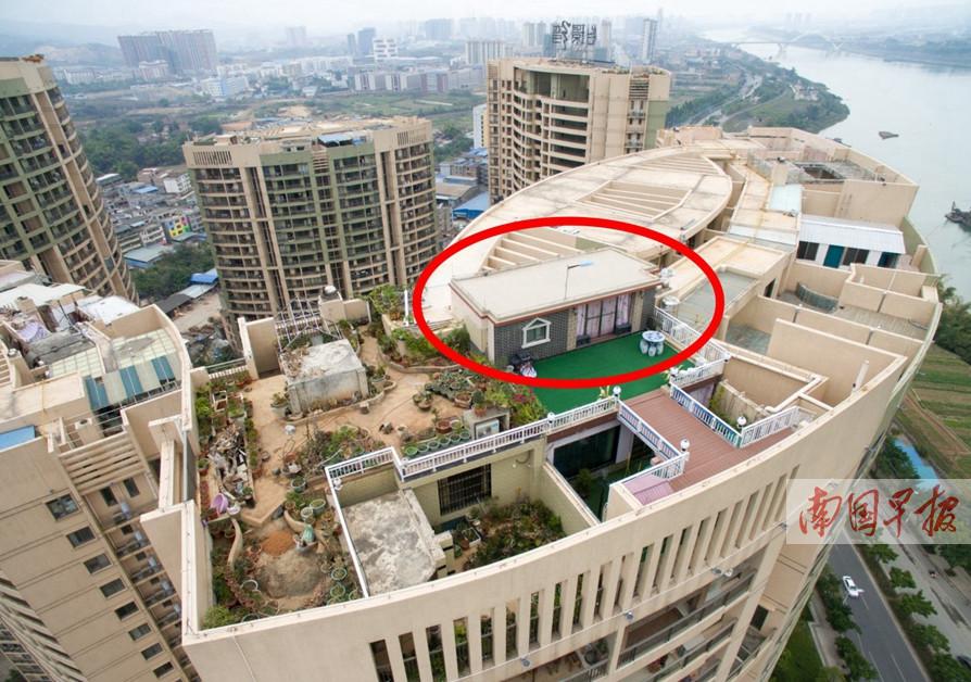 2月17日焦点图:公共天台建起私家花园 部门查处收效甚微
