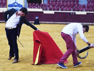 里斯本举办首届斗牛文化节