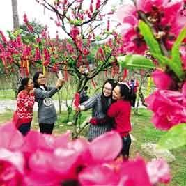广西手机报2月24日上午版