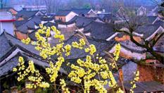 永州发现明清时期古建筑群