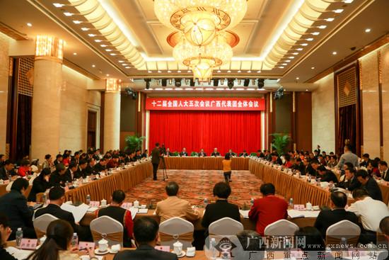 郭声琨马飚参加广西代表团审议 彭清华陈武等发言