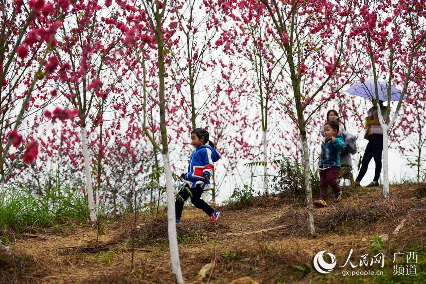 儿童画画大全图片桃花树