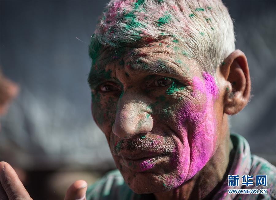 (国际)(5)印度沃林达文欢庆洒红节