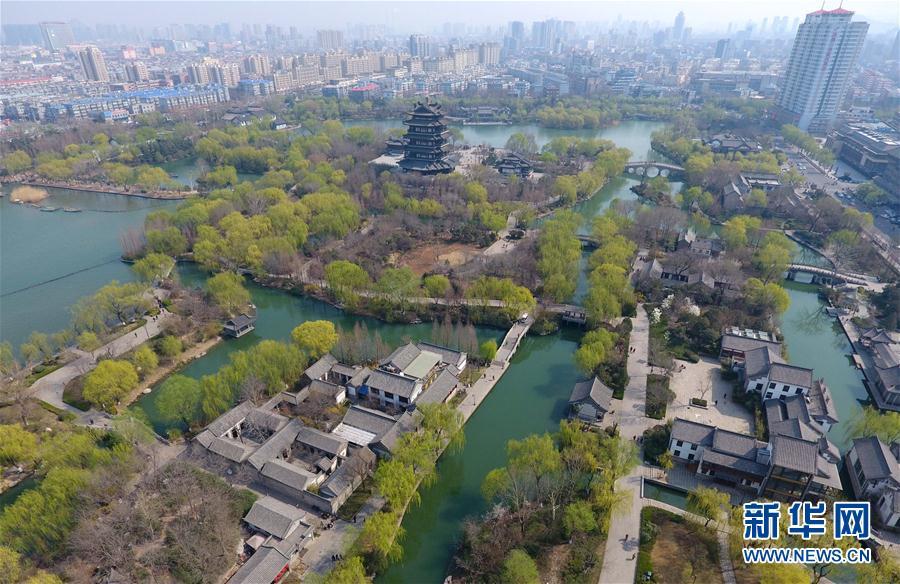 (春季美丽生态)(1)春满大明湖柳色新