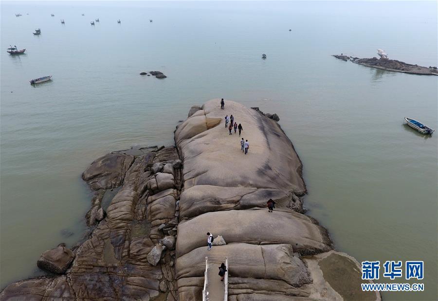 (新华网)(4)广西钦州:春暖海边好游玩