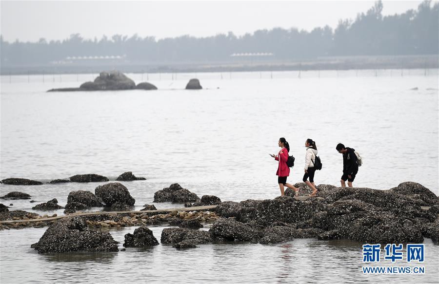(新华网)(5)广西钦州:春暖海边好游玩