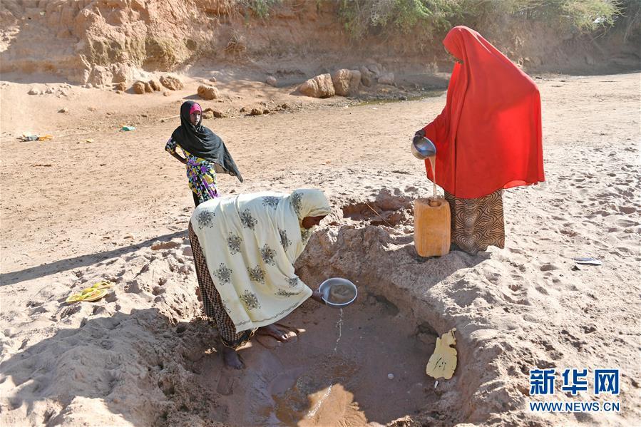 (国际)(1)索马里旱情严重 600多万人陷入饥荒