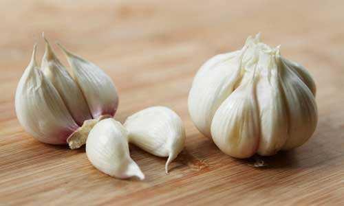常吃大蒜、菌菇类食物有助防胃癌
