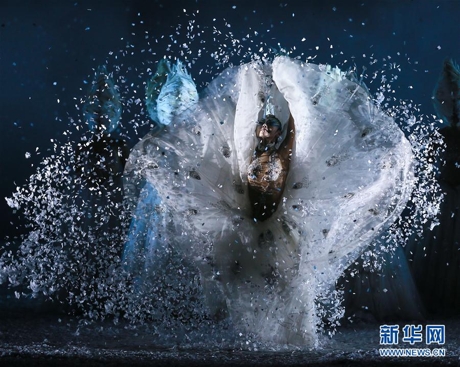 #(文化)(1)杨丽萍主演舞剧《孔雀之冬》舞动津城