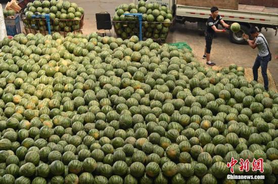 资料图:山西太原一水果批发市场,前来批发西瓜的商户络绎不绝。 <a target='_blank' href='http://www.chinanews.com/'></table>中新社</a>记者 武俊杰 摄