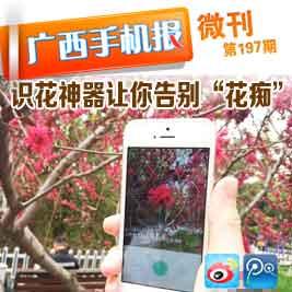 广西手机报4月23日下午版