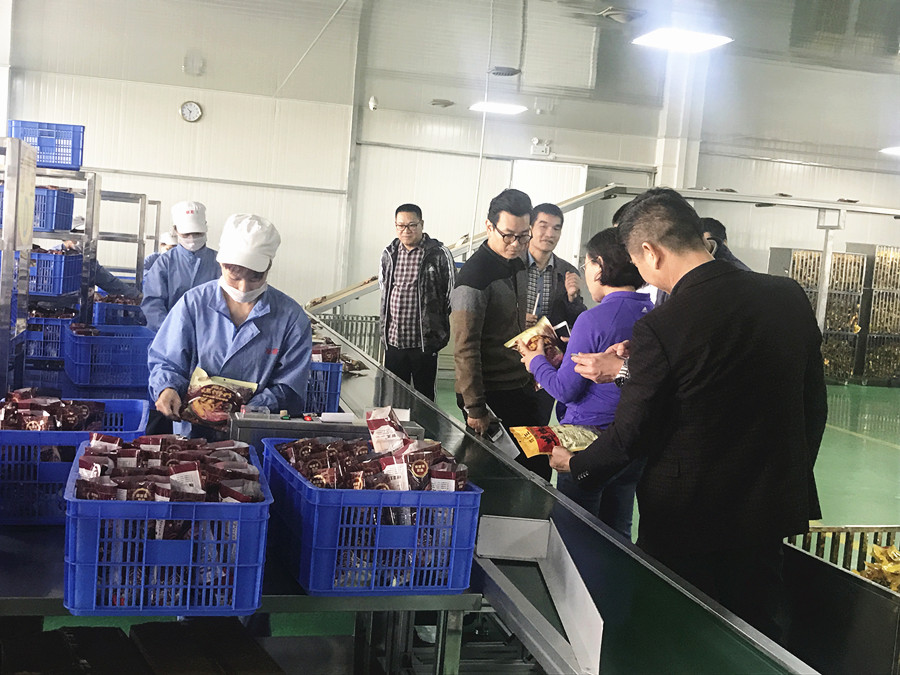 """国内旅游专家来柳调研""""把脉""""柳州工业旅游模式"""