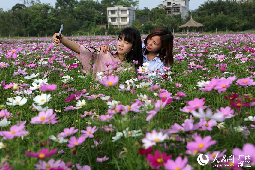 广西融水:赏花度假期
