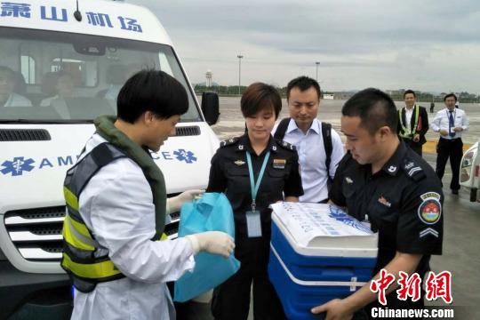 直升机抵达杭州萧山机场,进行器官交接。浙医二院提供