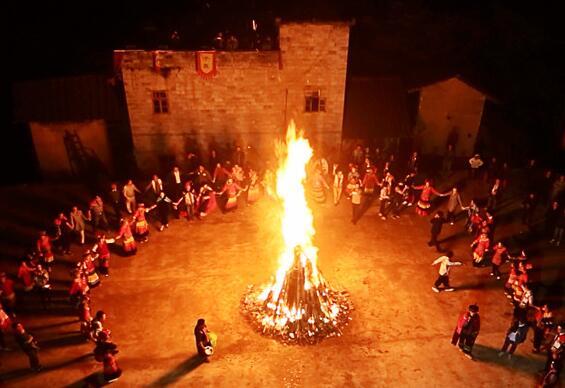 百色隆林:彝族举行千年古树茶祭茶盛典 游客狂欢