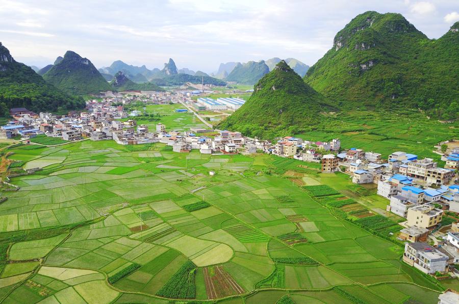 航拍:万亩稻田勾勒山乡美丽画卷