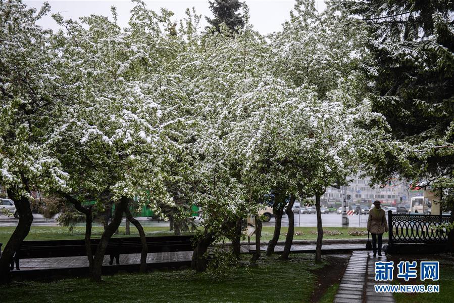 [6](外代二线)俄罗斯新西伯利亚市五月雪景