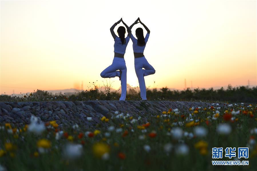 #(社会)(1)品花香 练瑜伽
