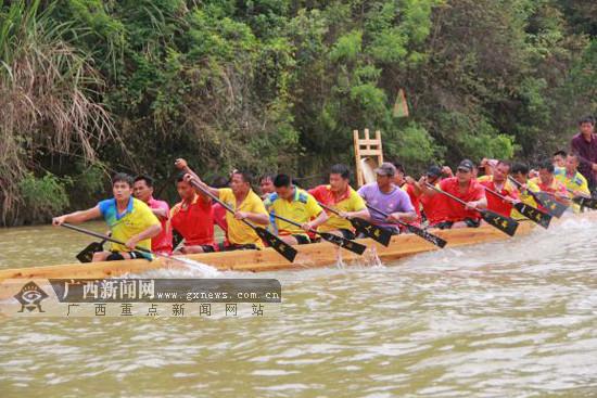 端午将至 梧州民间龙舟队将挑战吉尼斯世界纪录