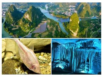 聚焦广西唯一国家重点湿地:荔江国家湿地公园(图)