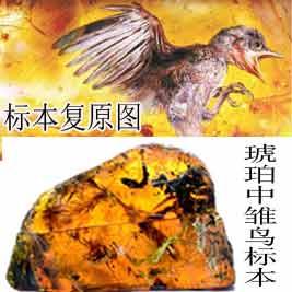 广西手机报6月11日下午版
