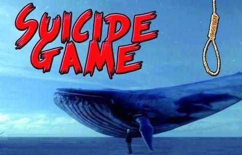 """【图解】警惕这个""""蓝鲸死亡""""游戏"""